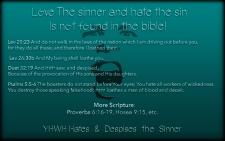 hate-the-sinner-v2