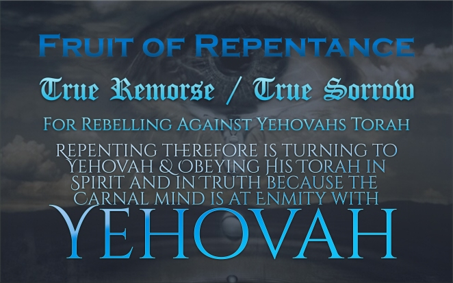 fruit-of-repentance